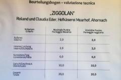 Ziggolan-Auszeichnung